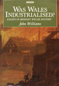 Was Wales Industrialised?