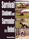 Survival Shadows and Surrender of a Rebel