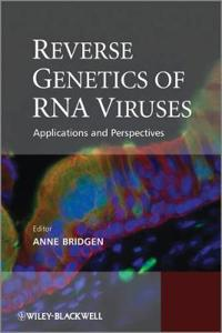 Reverse Genetics of RNA Viruses