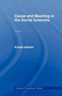 Cause and Meaning in the Social Sciences