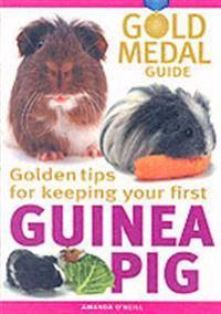 Guinea pig - gold medal guide