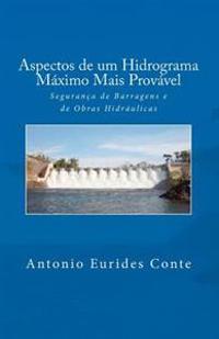 Aspectos de Um Hidrograma Maximo Mais Provavel: Seguranca de Barragens E de Obras Hidraulicas