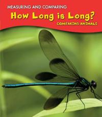 How long is long? - comparing animals