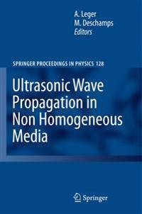 Ultrasonic Wave Propagation in Non Homogeneous Media