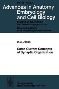Some Current Concepts of Synaptic Organization