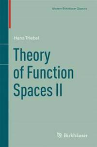 Theory of Function Spaces II
