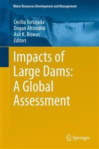Impacts of Large Dams: A Global Assessment
