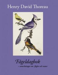 Fågeldagbok : anteckningar om fåglar och natur