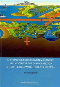 Approaches for Ecosystem Services Valuation for the Gulf of Mexico After the Deepwater Horison Oil Spill