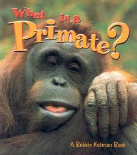 What Is A Primate - The Science of Living Things