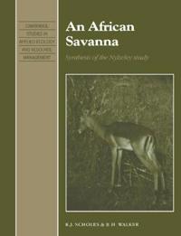 An African Savanna