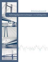 Br Ckendynamik - Schwingungsuntersuchungen Von Schr Gseilen