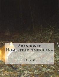 Abandoned Homestead Americana