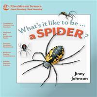 A Spider?