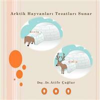 Arktik Hayvanlar Tezatlar Sunar