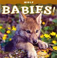 Wolf Babies!